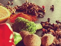 Spices, vegetables and herbs. Food ingredients Royalty Free Stock Photography