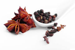Spices on the white background. Stock Images