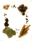 Spices on a white background Royalty Free Stock Images