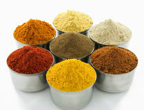 Spices  on white background Stock Image