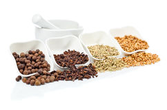 Spices on white background Royalty Free Stock Photos
