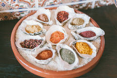 Spices in white bowls-shells. Spices in white bowls shells. Different spices royalty free stock photo