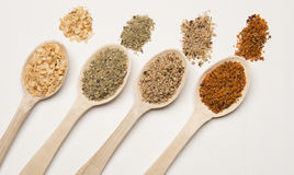 Spices with wood spoon Stock Photography