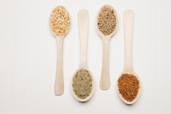 Spices with wood spoon Stock Images