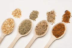 Spices with wood spoon Royalty Free Stock Photography
