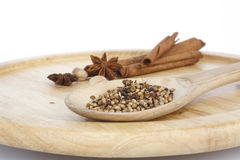 Spices on Wood Tray Royalty Free Stock Photo