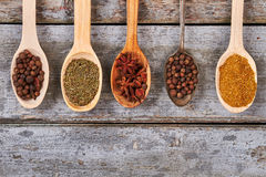 Spices on wooden background. Royalty Free Stock Images