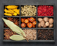 Spices in wooden box Stock Photo