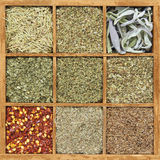 Spices in wooden box Stock Image