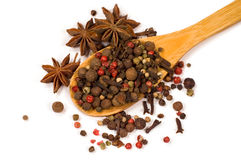 Spices in a wooden spoon Royalty Free Stock Image