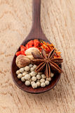 Spices in wooden spoon saffron, matrimony vine(chinese wolfberry. ),star anise ,white pepper with shallow focus on teak wood background Royalty Free Stock Photo