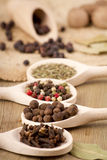 Spices on wooden spoons Stock Photos
