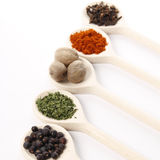 Spices on wooden spoons Royalty Free Stock Photo