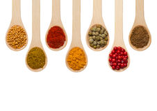 Spices in wooden spoons Stock Image