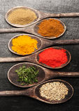 Spices in wooden spoons Royalty Free Stock Images
