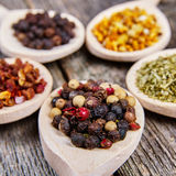 Spices on wooden spoons Stock Images