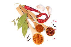 Spices in wooden spoons Royalty Free Stock Photos
