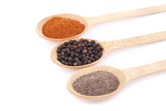 Spices on wooden spoons Royalty Free Stock Photography