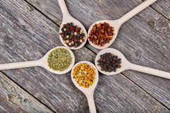 Spices on wooden spoons Royalty Free Stock Photos