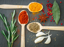 Spices in wooden spoons on the table Stock Images