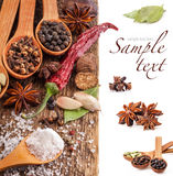 Spices on wooden table Royalty Free Stock Image