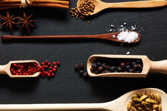 Spices in wooden utensils Stock Images