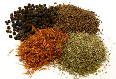 Spices of the word. Four kind of spices Royalty Free Stock Photography