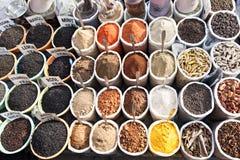Spicies on Goa market Stock Images