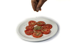 Spicing pomidory z oregano Zdjęcie Stock