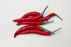 spicy Imagem de Stock