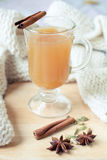 Spicy apple drink. Warming winter drink with spices Stock Image