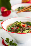 Spicy Asian beef soup Stock Image