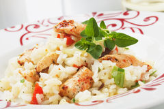 Spicy asian chicken with rice. Spicy asian style chicken meat with cooked rice Royalty Free Stock Photo