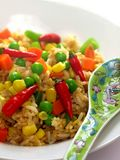 Spicy asian fried rice. On a plate with spoon Stock Images