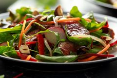 Spicy Beef Salad with Carrots, radish, bean sprouts, chilli, nuts and green mix.  royalty free stock image
