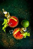Spicy bloody mary cocktail with garnish royalty free stock photos