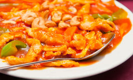Spicy Cashew Chicken Royalty Free Stock Images