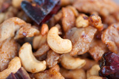 Spicy chicken with cashew nuts Stock Images