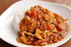 Spicy chicken curry and rice Royalty Free Stock Image