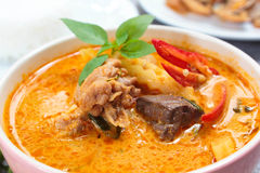 Spicy Chicken Curry With Bamboo Shoots. Royalty Free Stock Images