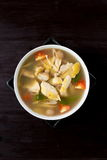 Spicy chicken and herbal soup Stock Photography