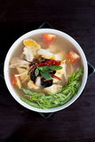 Spicy chicken and herbal soup Stock Image