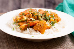 Spicy chicken korma Royalty Free Stock Images