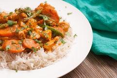 Spicy chicken korma. Chicken korma with a spicy sauce over white rice Stock Photography