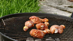 Spicy Chicken Legs On A Barbeque Grill stock footage