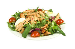 Spicy chicken salad. Stock Photos