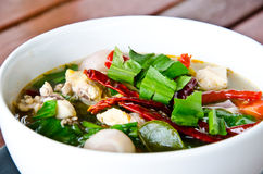 Spicy Chicken Soup Royalty Free Stock Photography