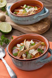 Spicy Chicken Tortilla Soup Stock Photo