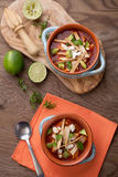 Spicy Chicken Tortilla Soup Stock Image