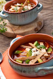 Spicy Chicken Tortilla Soup Royalty Free Stock Photography